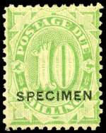 1902-04 10/- Dull Green Postage Due without strokes O/P Specimen MLH with light even gum toning and bluntish corner perf. The only way to fill this scarce stamp on a budget. Sg D43.