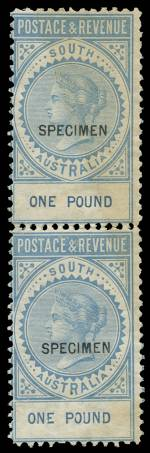 1886-1890 £1 Blue perf 10 Postage and Revenue sideways Crown over SA Wmk Queen Victoria Long Toms with 12½mm Specimen O/P in vertical pair, mint without gum. Scarce as a multiple. Sg 199.